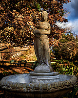 Newly Renovated Bird Bath and Stature. Autumn Backyard Nature in New Jersey. Image taken with a Nikon Df camera and 28 mm f/1.8 lens (ISO 100, 28 mm, f/4, 1/400 sed)