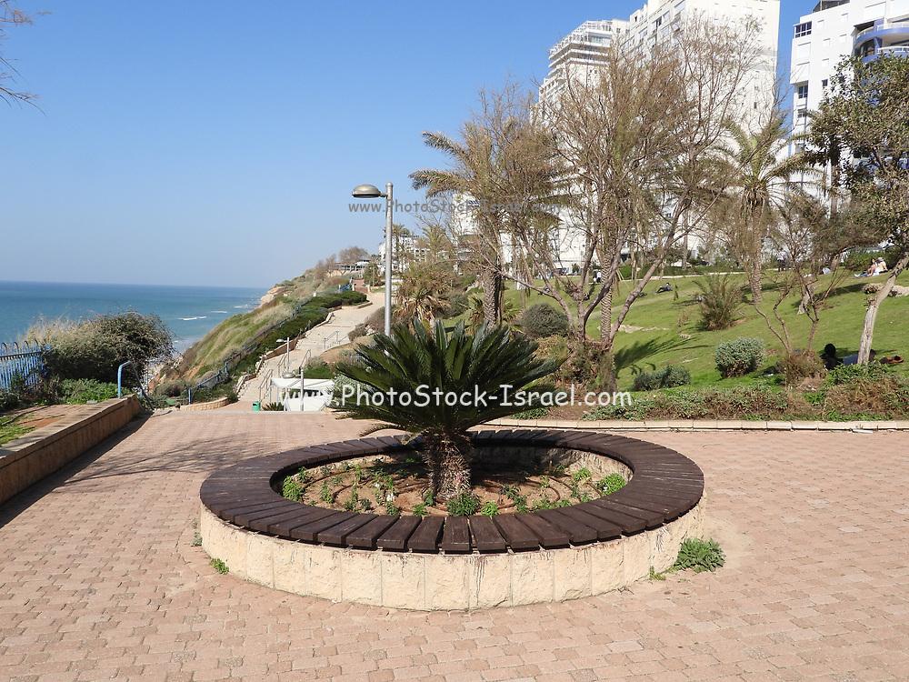 Israel, Sharon Region, Netanya coastal Promenade on the cliff overlooking the beach and Mediterranean Sea