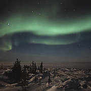 Aurora Borealis or Northern Lights over Churchill, Manitoba. Canada.