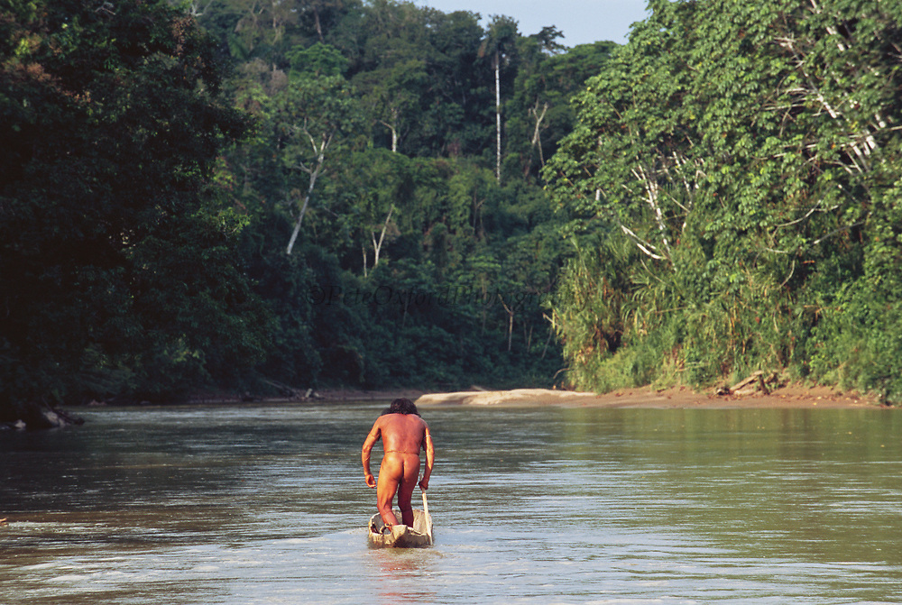 Yaminahua Indian poling Canoe<br />Boca Mishagua River<br />Amazon Rain Forest, PERU.  South America<br />'Only contacted in 1988'