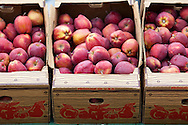 Ellensburg, Washington fruit stand with red delicious apples for sale.