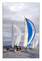 Largs Regatta Week - August 2012.Round the Island Race..Class 3 downwind, 3401C, Rogue Trader, Jamie Cumming