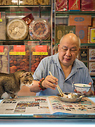 EXCLSUIVE<br /> Hong Kong's shop cats<br /> <br /> Your office job is tough. You have to wake up early, stare at a screen all day, and sometimes the kettle breaks and you can't make a cup of tea.<br /> But spare a thought for the real hard-workers.<br /> We're talking, of course, about the cats of Hong Kong.<br /> Every day, these hard-working felines wake up, stroll out of their little cat baskets, and get stuck in to a hard day working up front in their shop.<br /> <br /> Their days are spent tirelessly looking adorable, greeting customers, hunting mice, making sales, and ensuring high standards of cleanliness (mostly through licking, but still).<br /> It's tough work, but someone's got to do it. And these cats are entirely dedicated to their work, always willing to stay late and make sure everything's taken care of – even if that means napping behind the till.<br /> <br /> One photographer is taking the time to bring light to these unappreciated hard-workers, with a new photo series called Hong Kong Shop Cats.<br /> As part of his ongoing Chinese Whiskers series, photographer Marcel Heijnen has been documenting the lives of cats living and working in shops around Hong Kong.<br /> <br /> Originally from the Netherlands, Marcel was immediately drawn to Hong Kong's shop cats when he moved to the city – but he never thought they would become the focus of his next project.<br /> Marcel describes Hong Kong Shop Cats as a 'total fluke'.<br /> 'I moved back to Hong Kong after 18 years and found myself living without cats for the first time in 40 years,'<br /> <br /> 'So when I noticed a cat sitting proudly on the counter of a shop nearby my new place in the Sheung Wan/Sai Ying Pun area, I went over to pet it and took a few casual photos.<br /> 'I shot a few more of other shop cats nearby and put them on Facebook.'<br /> <br /> Of course, the reaction online was overwhelmingly positive. People loved the first few photos, and publishing house AsiaOne (who'd published Marce
