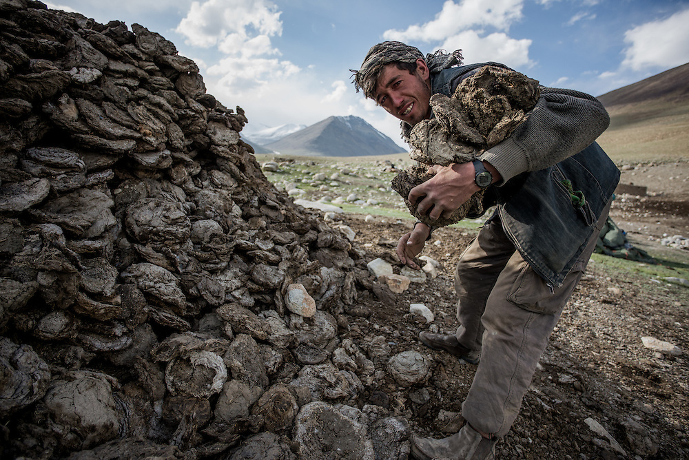 Collecting dried yak dung for a cooking fire. There are few trees on the plains of the Wakhan. The yak dung smokes fiercely when burnt, filling the stone huts our team sometimes used for cooking duties with thick acrid smoke.