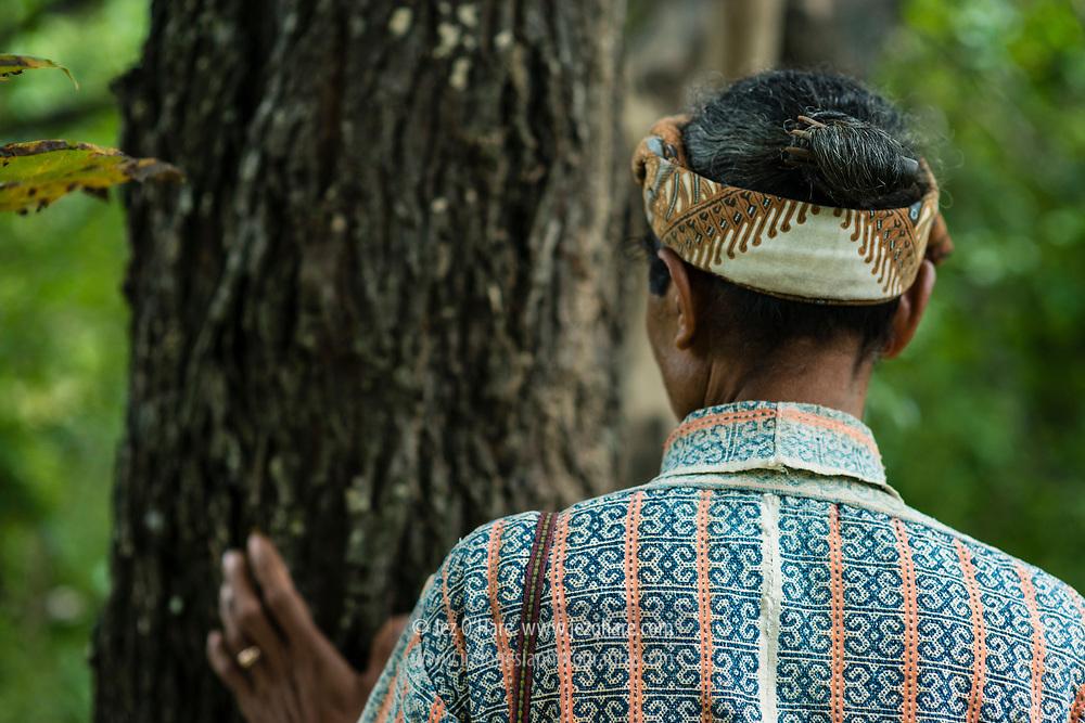 Bapak Raja Boti bersama pohon cendana yang berumur kira-kira seratus tahun. Kabupaten Timor Tengah Selatan, Pulau Timor, Nusa Tenggara Timur, Indonesia<br /> <br /> The King of Boti with a sandalwood tree approximately 100 years old. Kabupaten Timor Tengah Selatan, Pulau Timor, Nusa Tenggara Timur, Indonesia