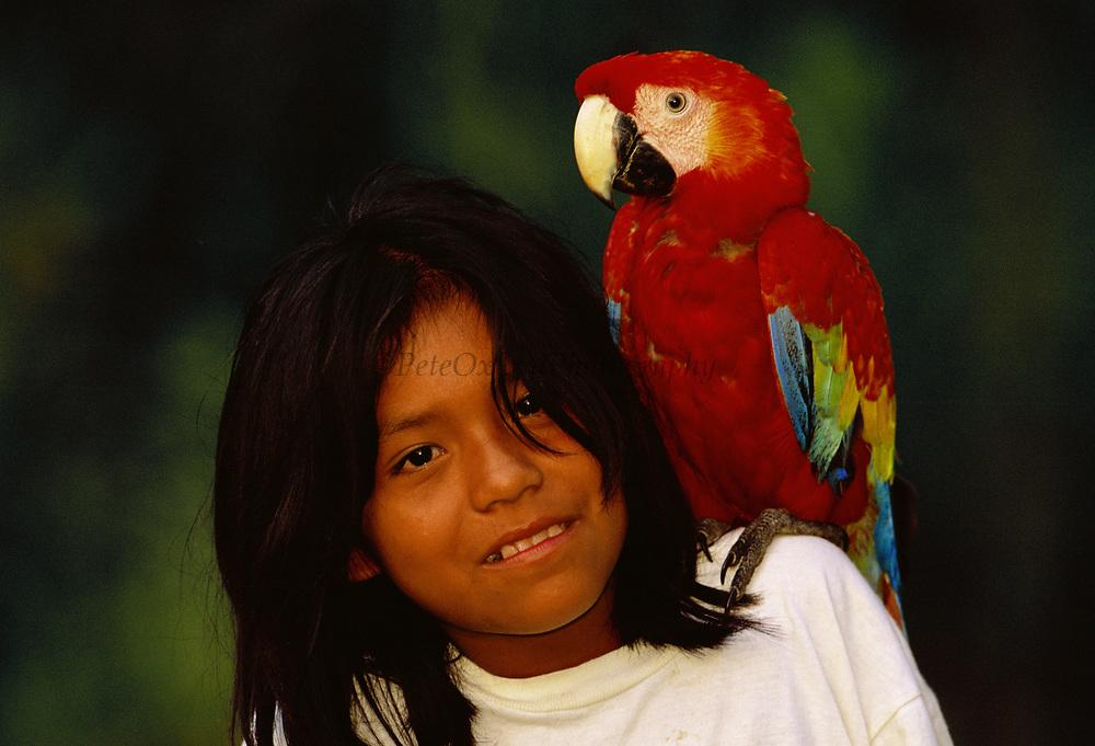 Machiguenga Indian with Scarlet Macaw<br />Timpia Community, Lower Urubamba River<br />Amazon Rain Forest, PERU.  South America
