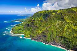 coral reef and Kee Beach, North Shore, Kauai, Hawaii, USA, Pacific Ocean