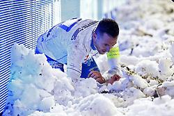 December 12, 2017 - Ostende, Belgique - KORTRIJK, BELGIUM - DECEMBER 12 : Danijel Milicevic midfielder of KAA Gent - illustration snow   pictured during the round of 1/4 Croky Cup between Kv Kortrijk and Kaa Gent on december 12, 2017 in Kortrijk, Belgium. 12/12/2017. (Credit Image: © Panoramic via ZUMA Press)