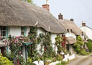 Row of pretty thatched whitewashed cottages, Porthoustock, Lizard Peninsula, Cornwall, England, UK