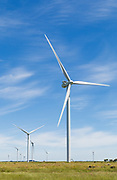 wind turbine from a windfarm in the countryside at MacArthur Wind Farm, Menhamite, Victoria, Australia <br /> <br /> Editions:- Open Edition Print / Stock Image