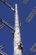 Workers from Public Utilities Maintenance repaint Marcy-South transmission towers on Sept. 18, 2007, in the Town of Wawayanda. The 160-foot towers carry 345,00-volt lines. This is the first time the towers have been repainted since they were put up in the 1980s.