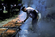 Gaucho prepares a large barbecued lunch of sausages on ranch, San Antonio de Areco, Argentina