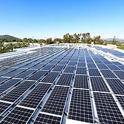 EDF Innovation Solar 2020