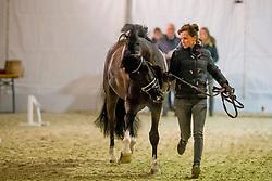 Verliefden Fanny, BEL, Indoctro vd Steenblok<br /> Jumping Mechelen 2019<br /> © Hippo Foto - Sharon Vandeput<br /> 27/12/19
