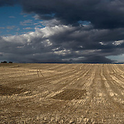 Wheat plantation in Badajoz province, Extremadura region, Spain . The WAY OF SAINT JAMES or CAMINO DE SANTIAGO following the Silver Way, between Seville and Astorga, SPAIN. Tradition says that the body and head of St. James, after his execution circa. 44 AD, was taken by boat from Jerusalem to Santiago de Compostela. The Cathedral built to keep the remains has long been regarded as important as Rome and Jerusalem in terms of Christian religious significance, a site worthy to be a pilgrimage destination for over a thousand years. In addition to people undertaking a religious pilgrimage, there are many travellers and hikers who nowadays walk the route for non-religious reasons: travel, sport, or simply the challenge of weeks of walking in a foreign land. In Spain there are many different paths to reach Santiago. The three main ones are the French, the Silver and the Coastal or Northern Way. The pilgrimage was named one of UNESCO's World Heritage Sites in 1993. When there is a Holy Compostellan Year (whenever July 25 falls on a Sunday; the next will be 2010) the Galician government's Xacobeo tourism campaign is unleashed once more. Last Compostellan year was 2004 and the number of pilgrims increased to almost 200.000 people.
