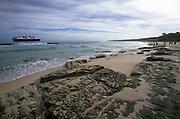 Henderson Island, Pitcairn Islands