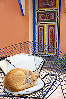 Maroc, Anti Atlas, région Sous-Massa-Draa, Taroudant, hotel Palais Salam // Morocco, Sous valley, Taroudant, Palais Salam hotel
