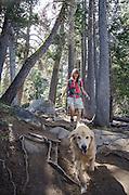 Woman and dog (golden retreiver) hiking in Eldorado National Forest, California
