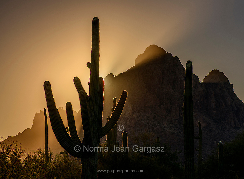 The sun sets on December 21, 2020, the Winter Solstice, at Ironwood Forest National Monument, Sonoran Desert, Eloy, Arizona, USA.