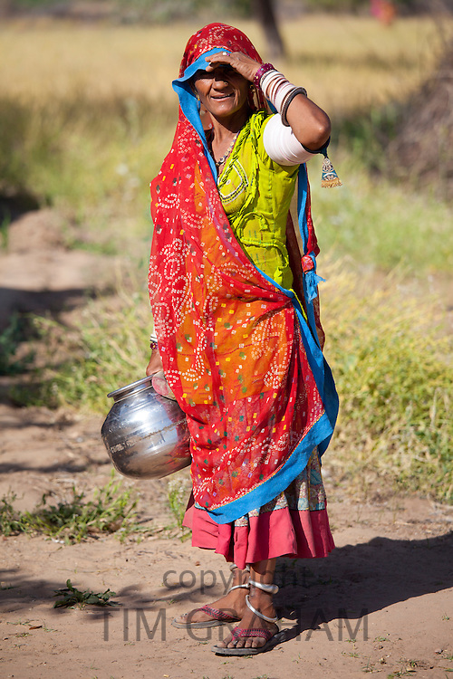 Indian Bishnoi woman carrying water pot for agricultural workers  near Rohet in Rajasthan, Northern India