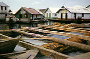 Wooden logs used as building foundations for informal housing area known as the Floating City, Manaus, Brazil 1962 removed as part of slum clearance policy in late 1960s