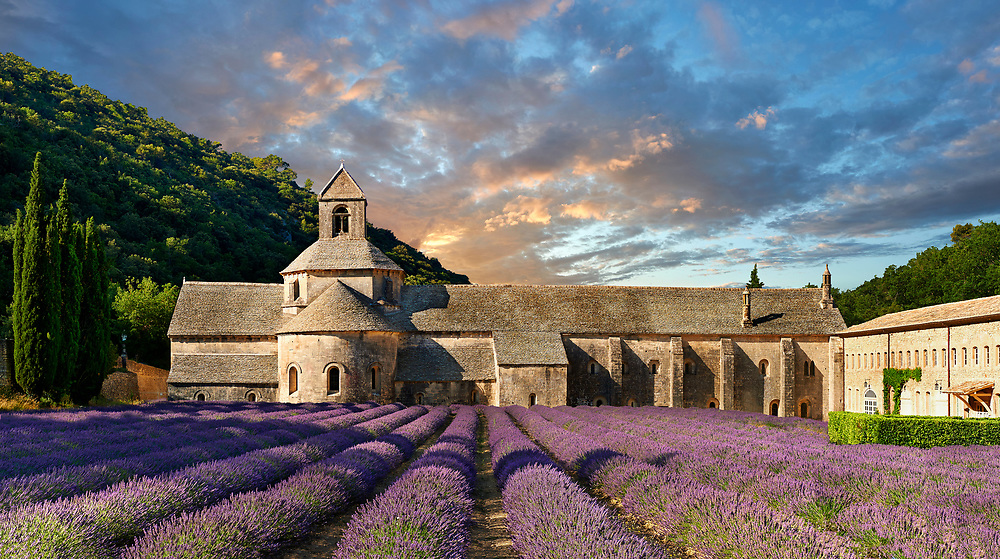 The 12th century Romanesque Cistercian Abbey of Notre Dame of Senanque ( 1148 ) set amongst the flowering lavender fields of Provence near Gordes, France. .<br /> <br /> Visit our MEDIEVAL PHOTO COLLECTIONS for more   photos  to download or buy as prints https://funkystock.photoshelter.com/gallery-collection/Medieval-Middle-Ages-Historic-Places-Arcaeological-Sites-Pictures-Images-of/C0000B5ZA54_WD0s