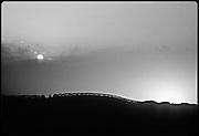vineyard silhouette, Napa Valley, California