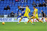 Cardiff City's Anthony Pilkington (l) shoots and scores his teams 1st goal.  Skybet football league championship match, Cardiff city v Rotherham Utd at the Cardiff city stadium in Cardiff, South Wales on Saturday 23rd January 2016.<br /> pic by Carl Robertson, Andrew Orchard sports photography.