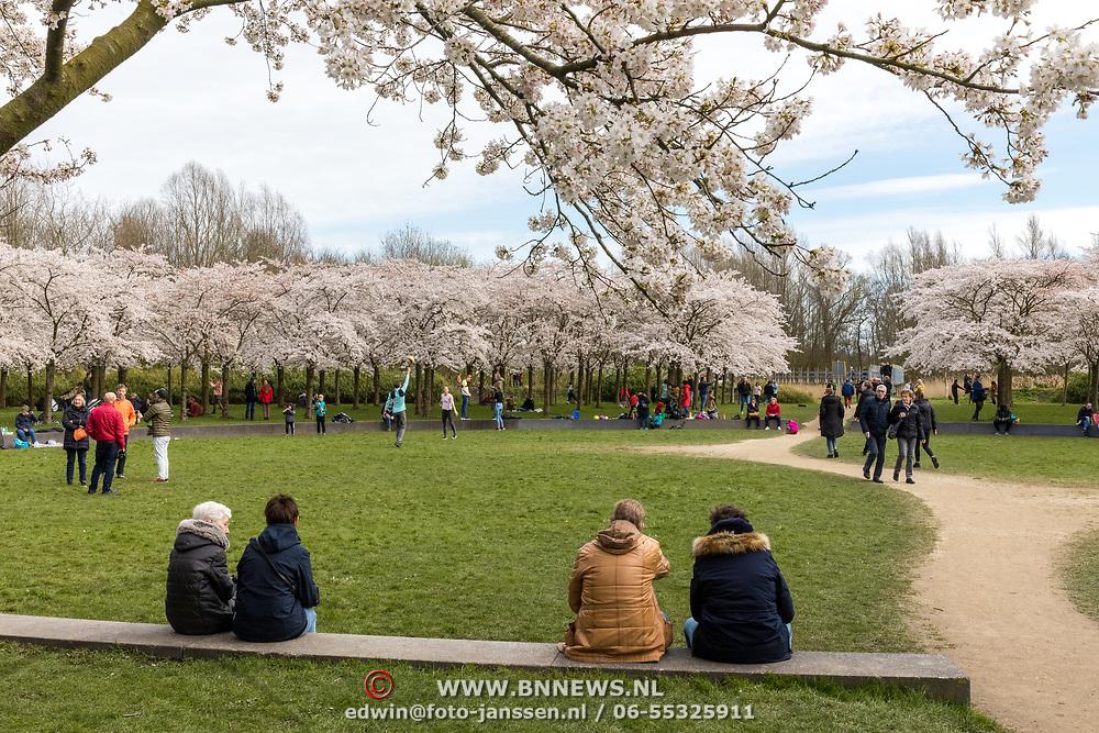 NLD/Amstelveen/20200318 - Bloesempark Amstelveen, mensen scheppen frisse neus tijdens Corona Break