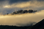 Clearing storm clouds in morning light, Whiskeytown National Recreation Area, Shasta - Trinity National Forest, Shasta County, California