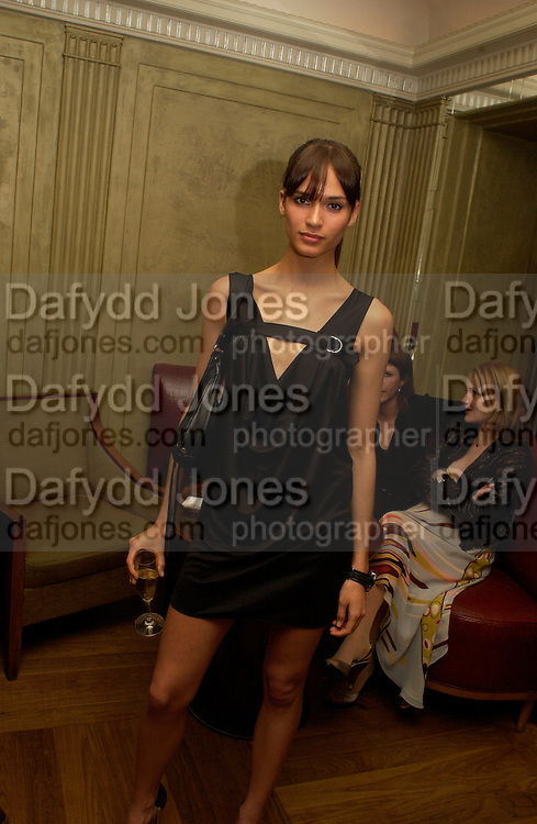Lindsay Frimodt, Sean Ellis and Tagheuer host party to launch the photo book, 365: Ayear in fashion, Claridge's Bar. 20 May 2003. © Copyright Photograph by Dafydd Jones 66 Stockwell Park Rd. London SW9 0DA Tel 020 7733 0108 www.dafjones.com