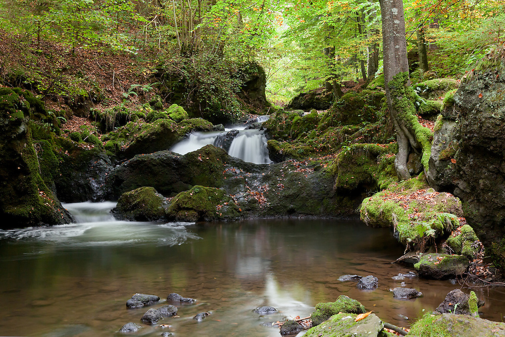 Cascade in wood scenery, Besse et St Anastaise, Auvergne, France