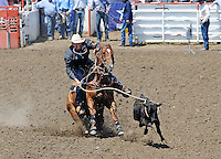 Jake Hannum from Plain City, UT bears down on a calf in Sunday's Day of Champions tie down finale at the California Rodeo Salinas.