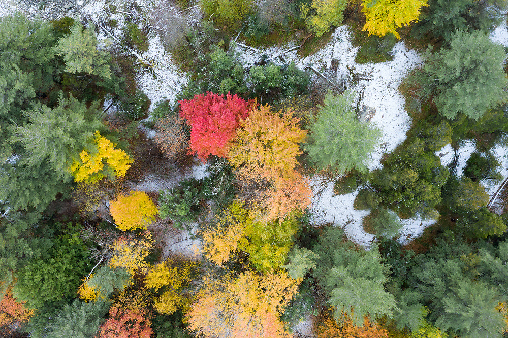 https://Duncan.co/first-snow-and-fall-colour-from-above