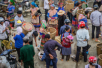 BAC HA, VIETNAM - CIRCA SEPTEMBER 2014:  Crowd bargaining and trading livestock  Bac Ha sunday market, the biggest minority people market in Northern Vietnam