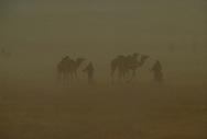 Bedouin men in Arabian sandstorm