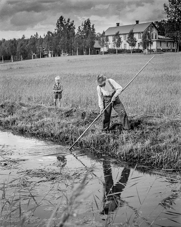 Tiller rensar ån i Gråsala på 1950-talet.