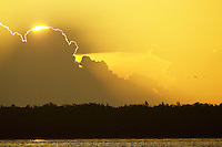 The setting sun illuminates the edges of the clouds with an amber glow over the Orinoco River Delta, Venezuela.