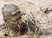 Mud Run 2013