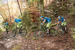 Group of five mountain bikers riding through forest path