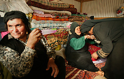 Family members of a newborn Bedouin baby, are congratulated by visitors, Bethlehem, Palestinian Territories, Nov. 16, 2004. It is customary for the family to receive many guests for the first for ten days after the birth. The family's eighth child was born in a small village outside of Bethlehem, on the day of Yasser Arafat's death.