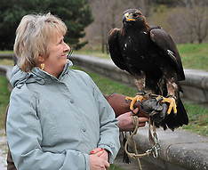 Rural Secretary meets Golden Eagle | Edinburgh | 12 December 2017.