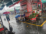 Bangkok JJ Chatuchak Market