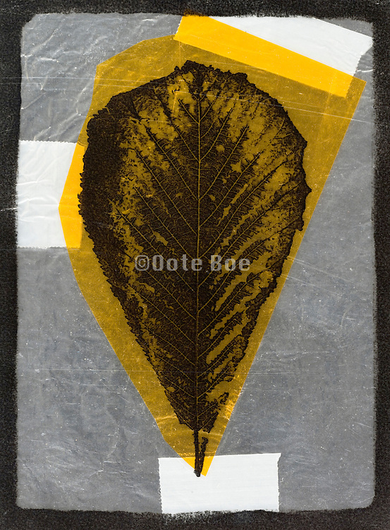 abstract collage form with leaf imprint