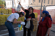 Waving the Kaparot chicken over the female believers head, Mea Shearim, Jerusalem, Israel<br /> Kaparot, an aged old Jewish tradition were a chicken is waved over the believer?s head, reliving the person from all sins which are passed on to the chicken. The chicken is slaughtered and at times given to charity.