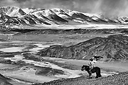 A black and white of an eagle hunter hunting in the Altai mountains with his golden eagles on horseback, Altai Mountains, Bayan Ulgii, Mongolia