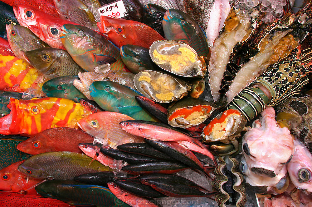 Snapper, parrotfish, shellfish and skinned fugu fish in the Naha City Makishi public market. Purchasers can bring their fish upstairs to the restaurants to have their fish cooked to order. (Supporting image from the project Hungry Planet: What the World Eats)
