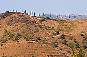 View from the winery, vineyards. Clos de l'Obac, Costers del Siurana, Gratallops, Priorato, Catalonia, Spain.