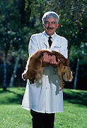 Dr. William C. Dement holds Tucker, who has a cataplexy attack at the sight of food moments later.  Stanford Universtiy has a colony of narcoleptic dogs that appear normal but like humans fall asleep when excited