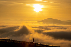 © Licensed to London News Pictures. 07/09/2021. Keswick UK. A man walks his dog at the top of Latrigg fell in Cumbria at sunrise this morning while looking down on the cloud inversion covering the town of Keswick in the Lake District. Photo credit: Andrew McCaren/LNP